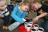 Preschoolers watering their plants